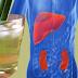Pandan Leaf Tea Recipe: Get Rid of Toxins From Your Body Using Pandan Leaves