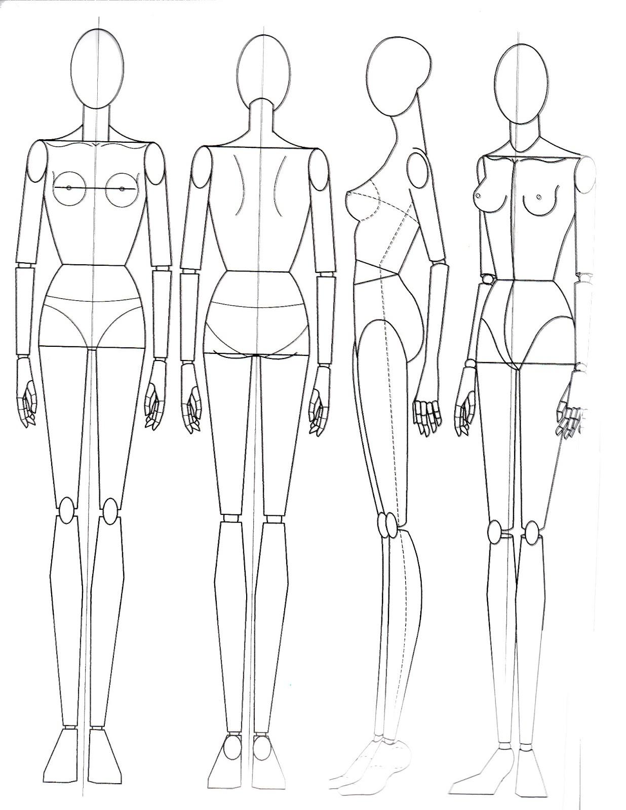 Paper Doll School The Basics Of Anatomy