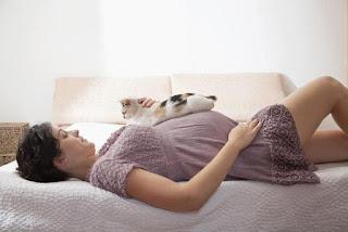 cosas prohibidas durante el embarazo
