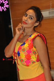 Telugu Actress Model Sri Reddy Latest Stills in Yellow Dress  0012.JPG