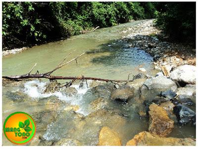 Salah satu sungai yang terdapat di jalur Kuta Malaka