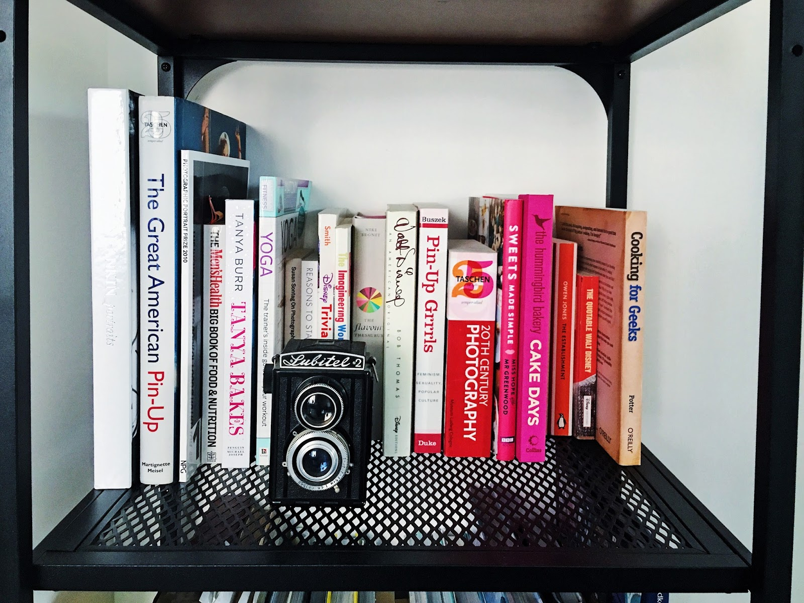 Books arranged by colour on industrial look shelves with vintage camera.