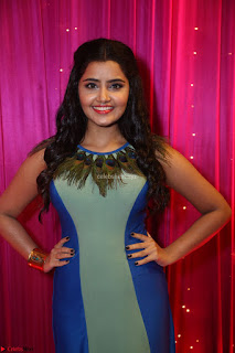 Anupama Parameswaran in lovely shaded gown ~  Exclusive 33.JPG