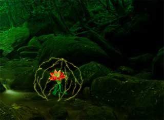 Flower to Fairy Girl Escape - Juegos de Escapar