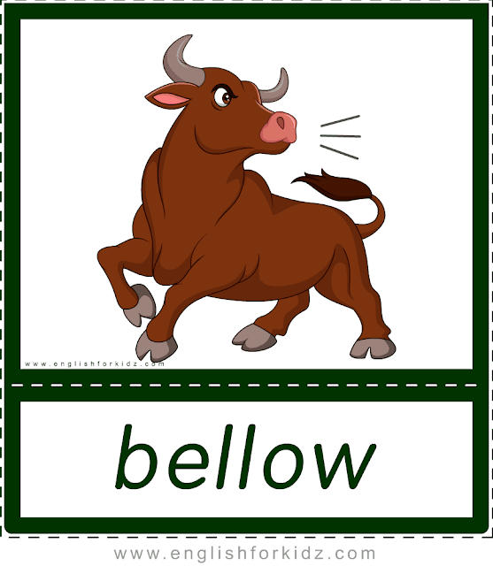 Animal sounds flashcards - bellow - bull -- printable ESL resources
