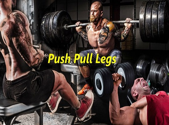 The Push/Pull/Legs Routine for Best Muscle Gains
