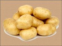 potato - une pomme de terre - Solanum tuberosum