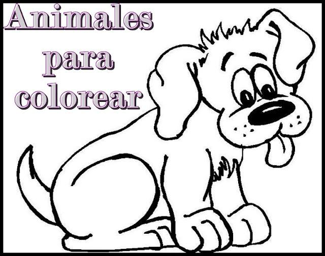 Animales para colorear.