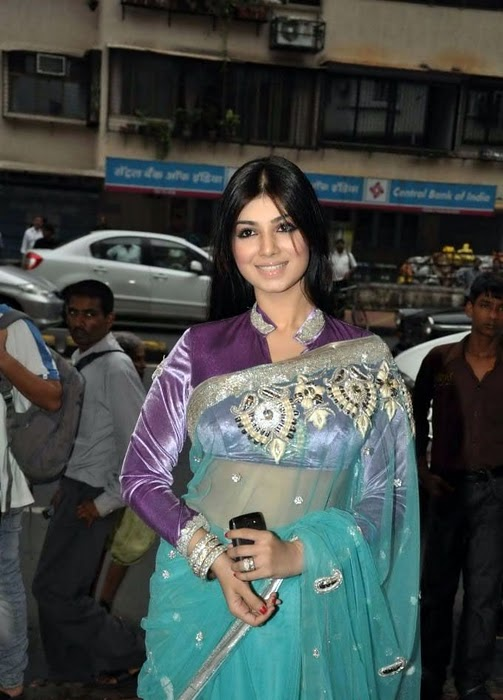 All Stars Photo Site Ayesha Takia In Transparent Saree -7490
