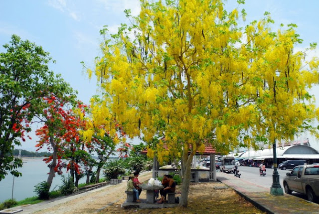 7 lý do nên chọn nhà ở xã hội, chung cư Hope Residence Phúc Đồng Long Biên