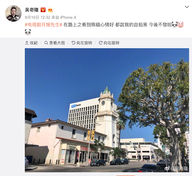 Cecilia Liu Shishi pregnant?