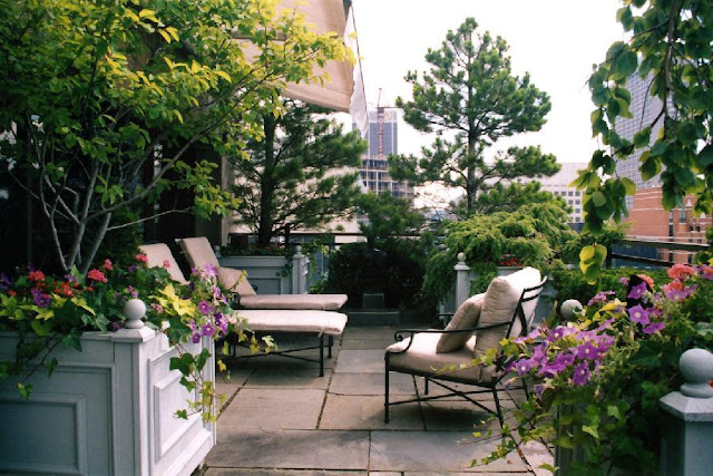 Natural Apartment Rooftop Garden as Beautiful Rooftop Patio Design