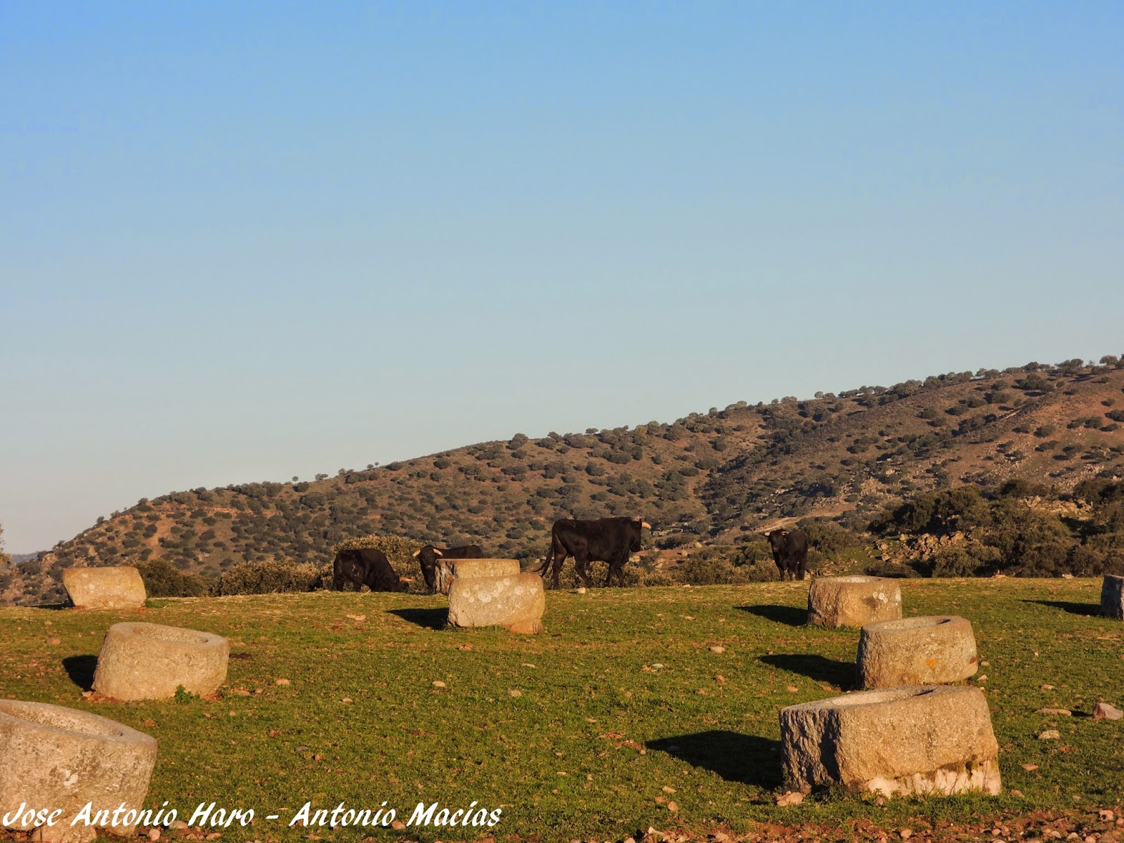 Rioyeguas comederos de granito para el ganado en sierra for Informacion sobre el granito