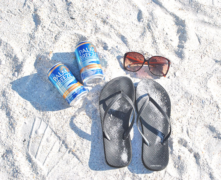 Make Everyday a Beach Day with Palm Breeze