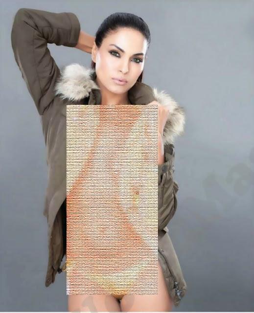 MALIK'S CAFE: Veena Malik's Complete Bold And Stunning
