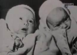 irmãs Pollock bebes