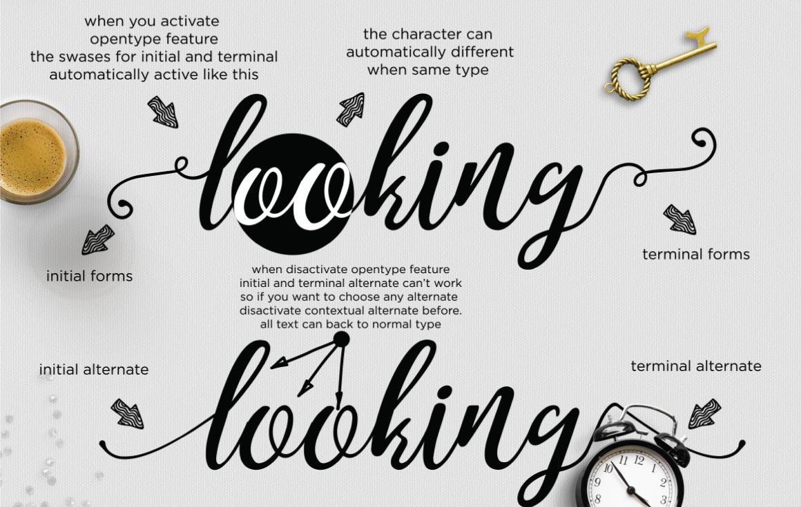noelan feminine script font free download