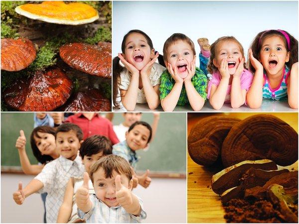Công dụng của nấm linh chi đối với sự phát triển của trẻ.