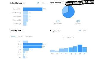 Cara Melihat Informasi Statistik Pengunjung akun Instagram Kita