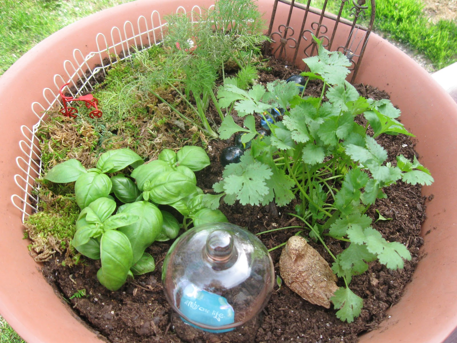 COMFY HOUSE: how to create a fairy herb garden