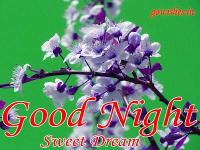 14-12-2018 Good night wishes Image wallpaperToday
