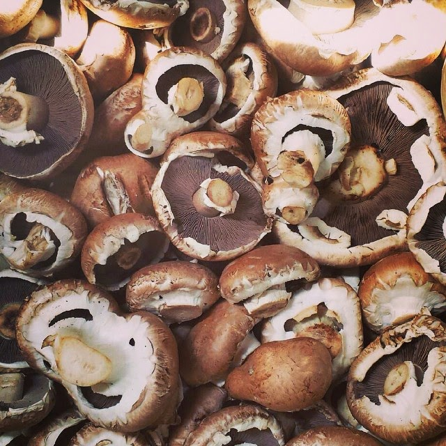 Organic Swiss Brown Mushrooms
