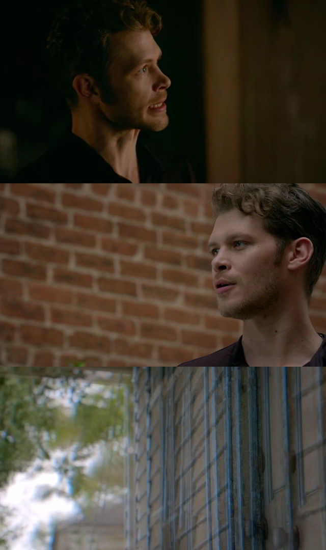 The Originals Temporada 4 Completa HD 720p Latino Dual