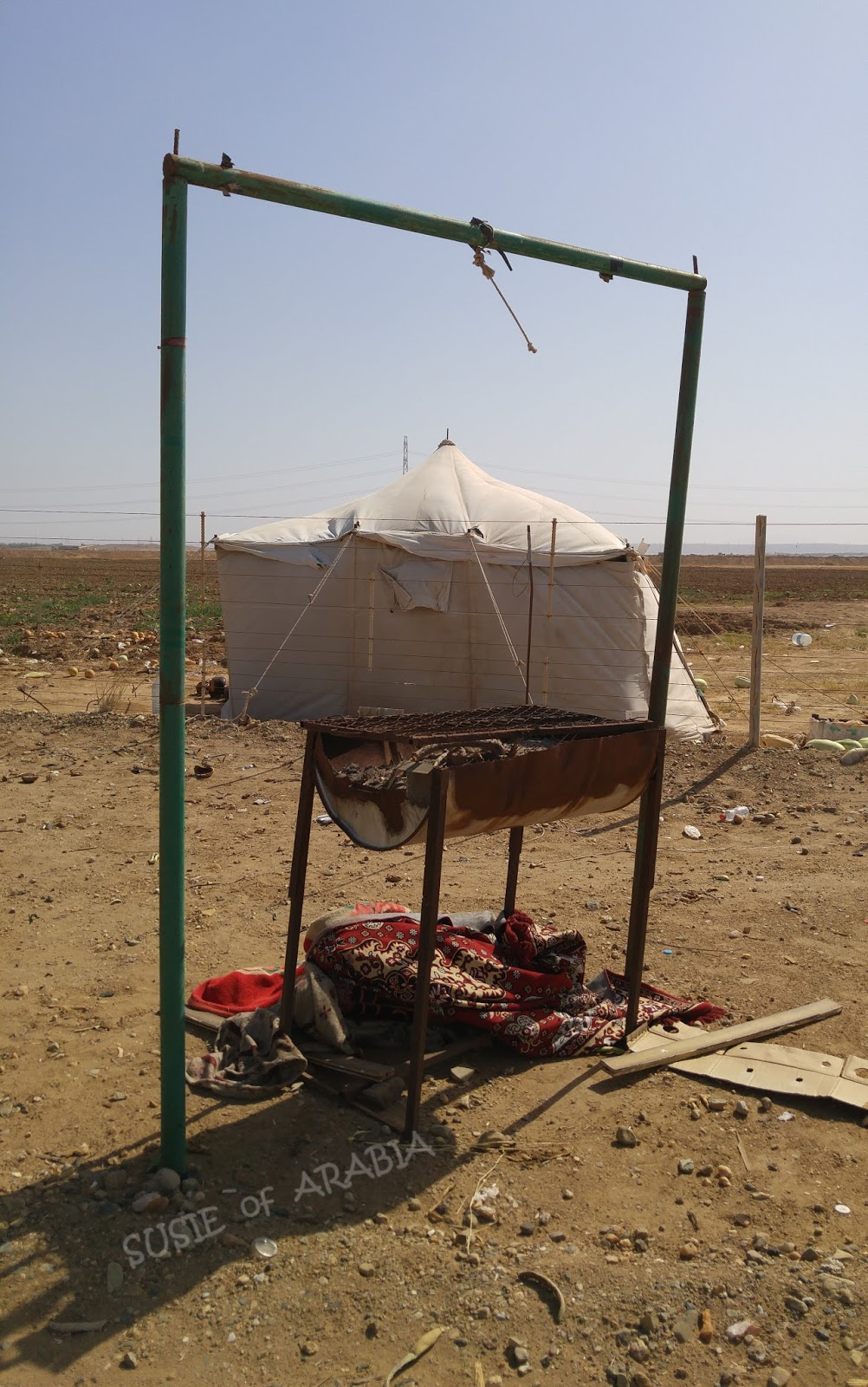 SUSIE of ARABIA: Along the Road from Jeddah to Yanbu