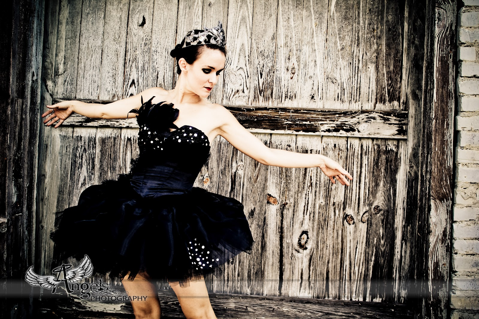 Ashlee S Costume Closet Black Swan Costume