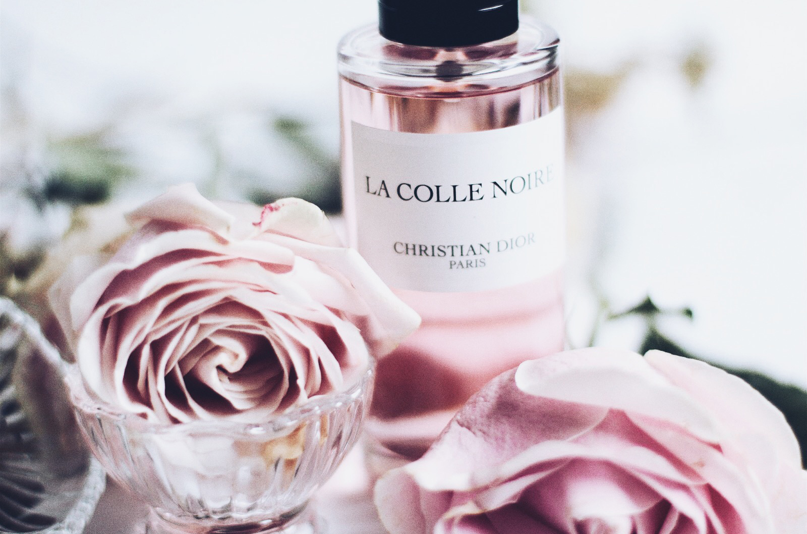 christian dior la collection privée la colle noire parfum avis