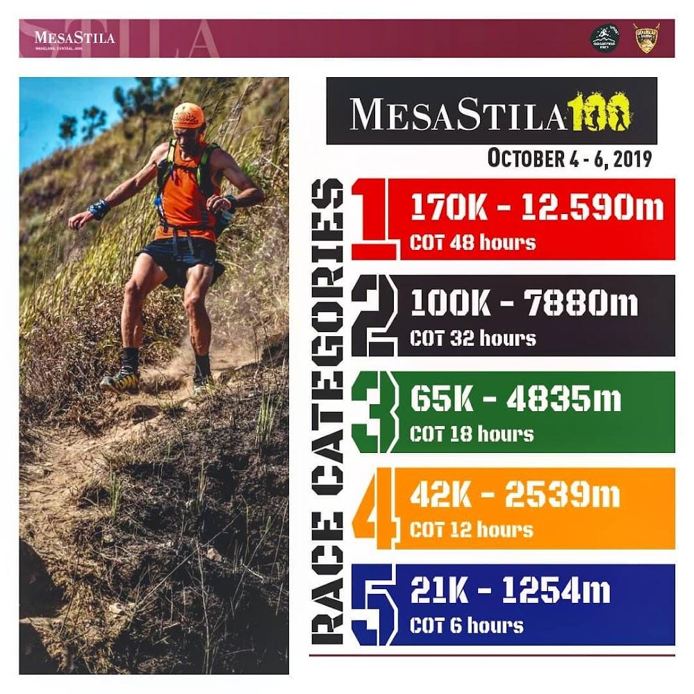 MesaStila 100 • 2019