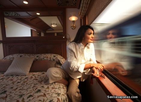 Maharajas' Express [5]