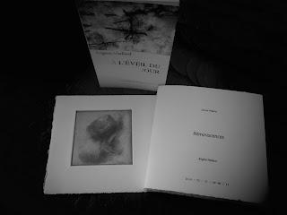 Livre d'artiste Réminiscences