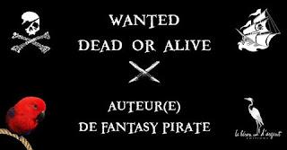 Le Héron d'Argent recherche sa nouvelle plume !; heron; pirate; one shot; fantasy; roman; dossier; chapitre