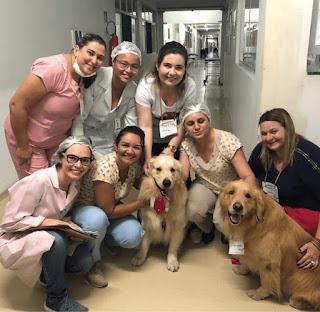 Cães do Projeto OnCãoterapeutas serão atrações da X Semana da Enfermagem da UFCG em Cuité
