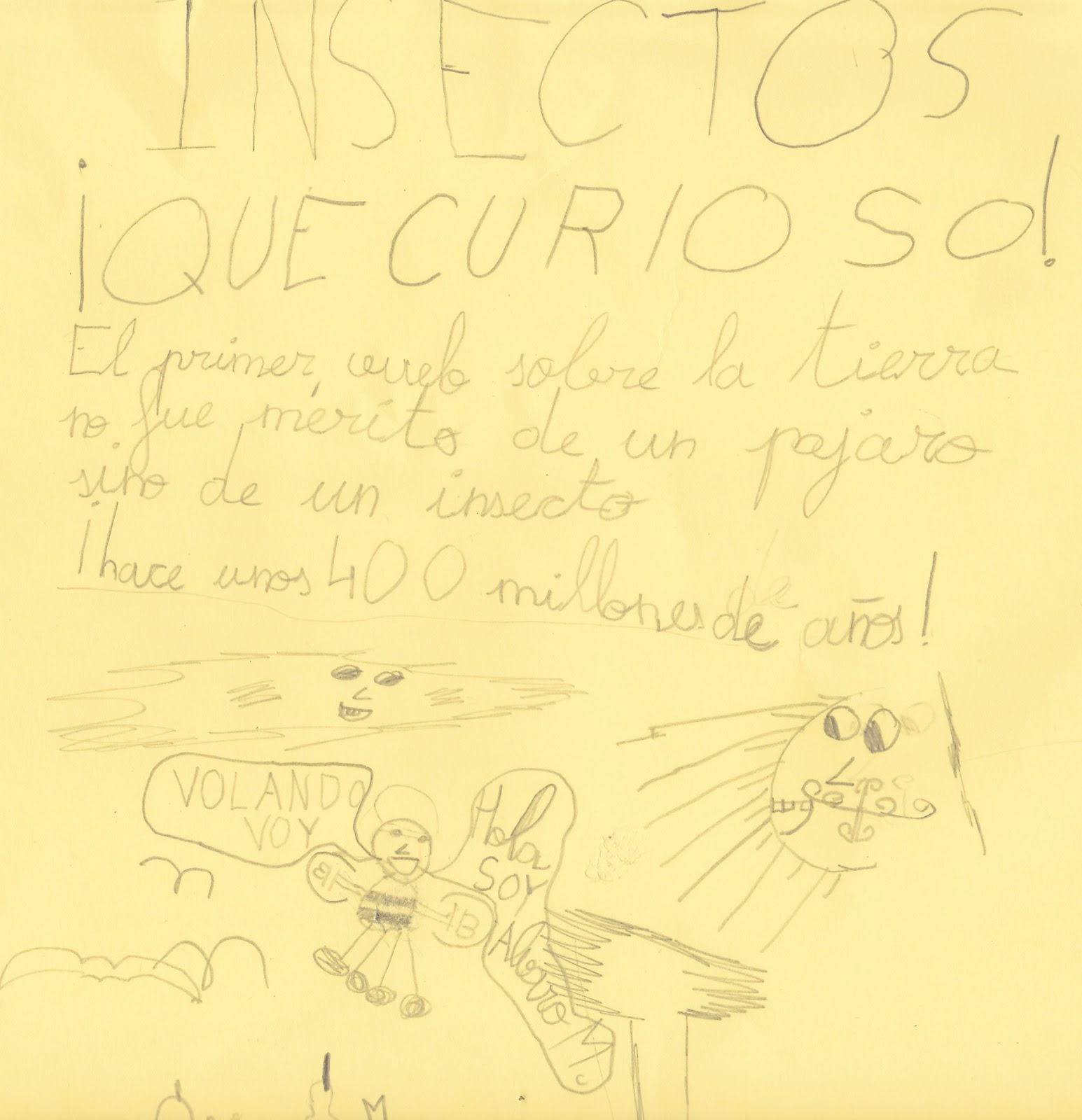 Ceip El Zargal Second Grade Insectos Que Curioso