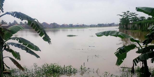 Ratusan Rumah Terendam Banjir di Pabuaran