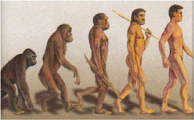 Teori evolusi yang dikemukakan oleh Charles Darwin.