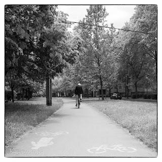 Bicikliút a szegedi tarján városrészben