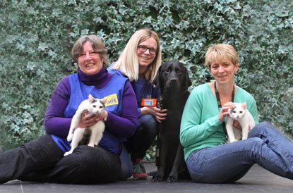 Kittens adopted by Guide Dogs