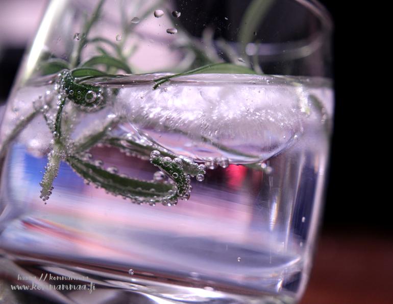 napue gin tonic rosmariinilla