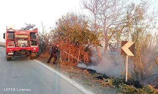 Και πάλι πυρκαγιά στην Λήμνο, πήρε φωτιά μέχρι και κολόνα της ΔΕΗ