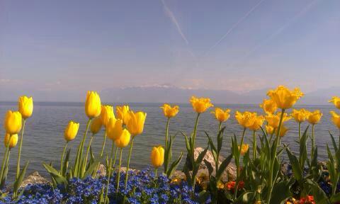nad Jeziorem Genewskim