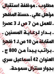 وظائف وسيط الاسكندرية -موظفة استقبال