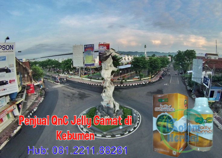 Penjual QnC Jelly Gamat di Kebumen