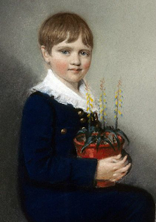 Seven-year-Old Charles Darwin in 1816