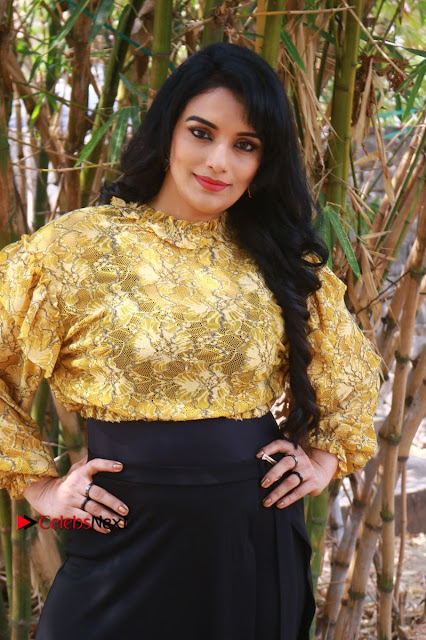 South Indian Actress Shweta Menon Stills at Inayathalam Audio Launch Stills  0008.jpg