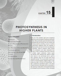 PHOTOSYNTHESIS IN HIGHER PLANTS BY PLANCESS