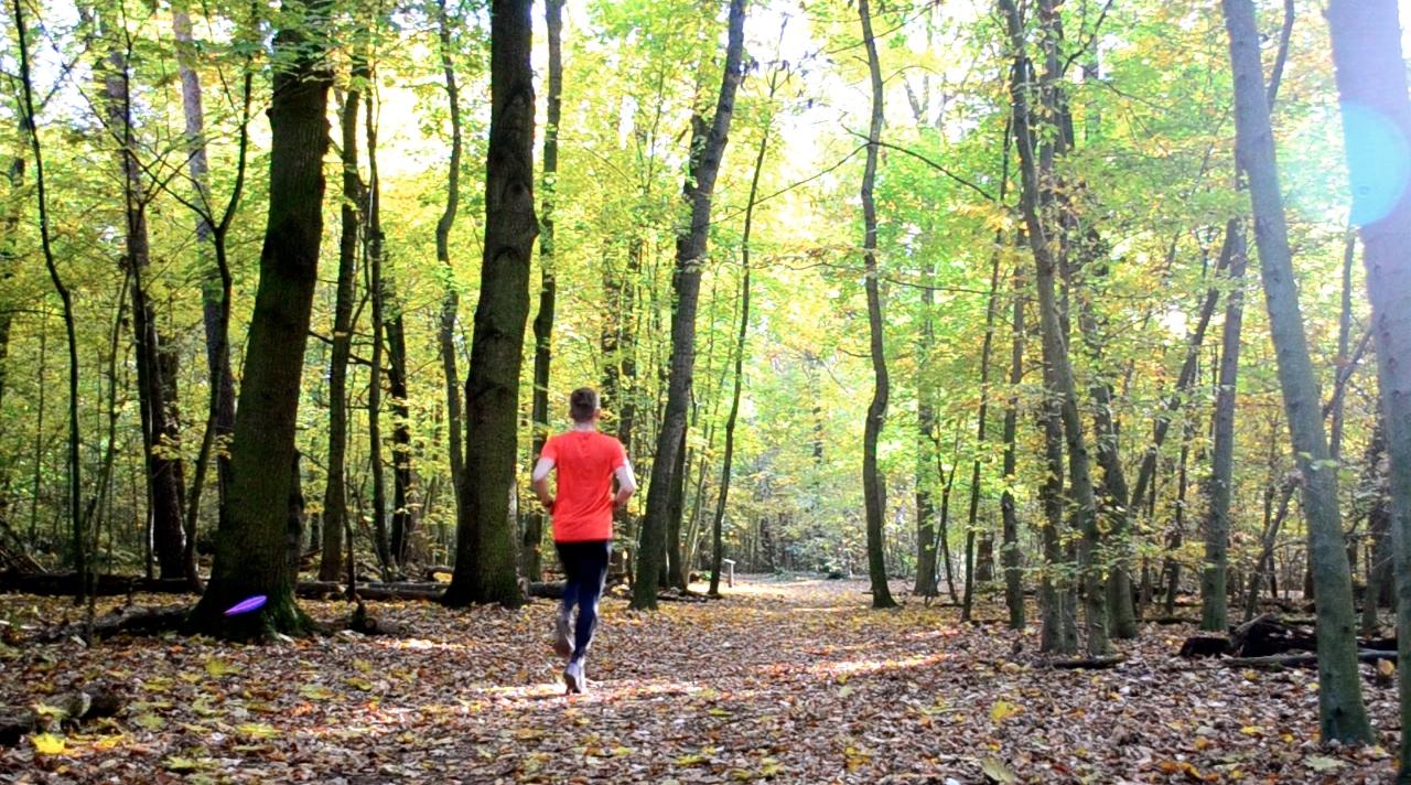 Forrest Running Run Autumn