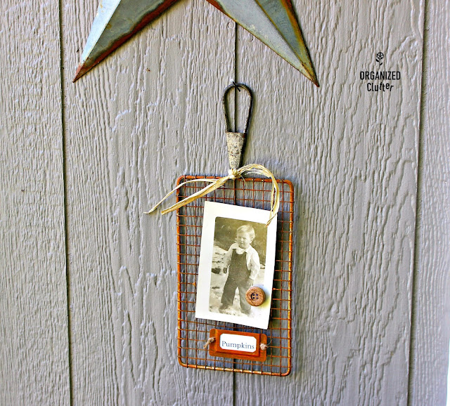 "Vintage Vegetable Grater ""Pumpkin"" Photo Holder www.organizedclutter.net"